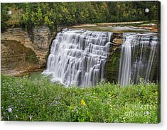 Autumn Flower Of Letchworth Middle Falls Acrylic Print
