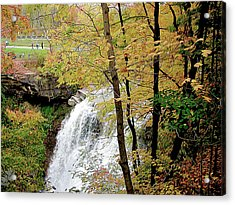 Falls In Autumn Acrylic Print