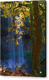 Falls In The Fall Acrylic Print by Dale Stillman