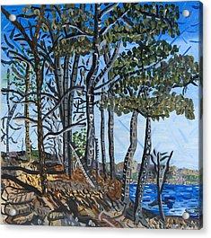Falls Lake At Blue Jay Point Acrylic Print by Micah Mullen