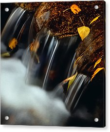 Falls Of Autumn Acrylic Print by Steven Milner