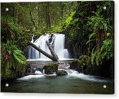 Falls On Canyon Creek Acrylic Print