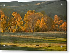Acrylic Print featuring the photograph Falls Reward.. by Al Swasey