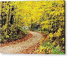 Fallscape Acrylic Print by Don Phillips