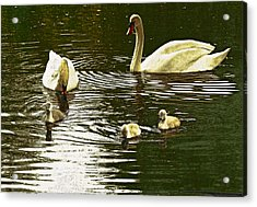 Acrylic Print featuring the photograph Family Day Out  by Fine Art By Andrew David