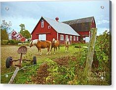 Family On The Farm Acrylic Print