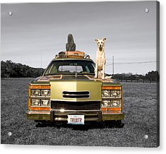 Family Queen Truckster Acrylic Print by Jimmy Bruch