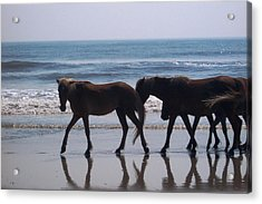 Family Stroll Acrylic Print by James and Vickie Rankin