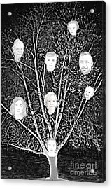 Family Tree Acrylic Print by Diamante Lavendar