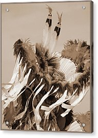 Acrylic Print featuring the photograph Fancy Dancer In Sepia by Heidi Hermes
