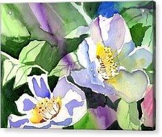 Fancy Flowers Acrylic Print by Janet Doggett