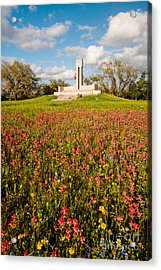 Fannin Monument And Memorial With Wildflowers In Goliad - Coastal Bend South Texas Acrylic Print by Silvio Ligutti