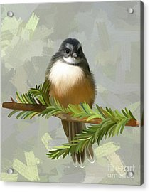 Acrylic Print featuring the painting Fantail  by Ivana Westin