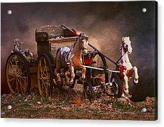 Fantastic Forgotten Toys Acrylic Print