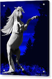 Fantasy By Moonlight Acrylic Print by Diane C Nicholson