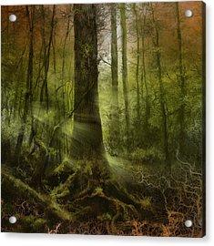 Fantasy Forest 2 3 Acrylic Print