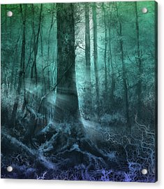 Fantasy Forest 3 Acrylic Print