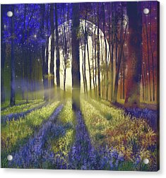 Fantasy Forest 4 Acrylic Print