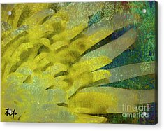Acrylic Print featuring the photograph Fantasy by Traci Cottingham