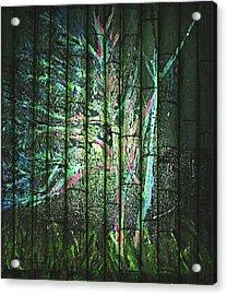 Fantasy Tree On Bamboo Acrylic Print