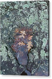 Fantom In The Weathered Bluestone Acrylic Print