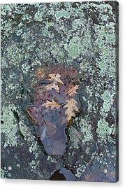 Fantom In The Weathered Bluestone Acrylic Print