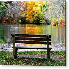 Farewell Autumn Acrylic Print by Angela Davies