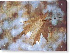 Acrylic Print featuring the photograph Farewell Summer by Ari Salmela