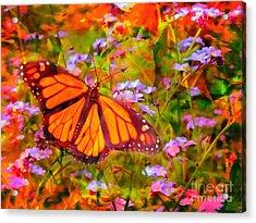 Farfalla 2015 Acrylic Print