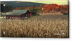Farm Fall Colors Acrylic Print