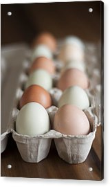 Farm Fresh Eggs Acrylic Print by Ken Stigler
