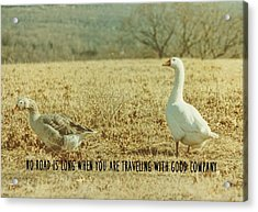 Farm Geese Quote Acrylic Print by JAMART Photography