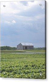 Farm House Acrylic Print by Tina McKay-Brown