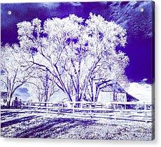 Farm In Suburbia With Wildcat Flare Acrylic Print