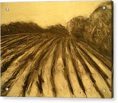 Farm Land Study Acrylic Print by Jaylynn Johnson
