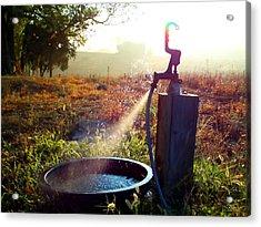 Farm Life 5 Acrylic Print
