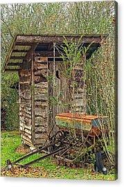Farm Life  Acrylic Print by Susan Leggett