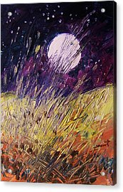 Farm Moon Acrylic Print by John Williams
