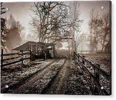 Farm Road Late Autumnl. Acrylic Print