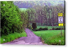 Acrylic Print featuring the photograph Farm Road by Susan Carella