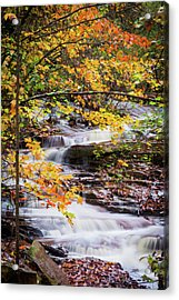 Acrylic Print featuring the photograph Farmed With Golden Colors by Parker Cunningham