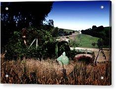 Farmer's Garden Acrylic Print by Tim Nichols
