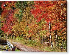 Acrylic Print featuring the photograph Farmers Path Of Fall Colors by Jeff Folger