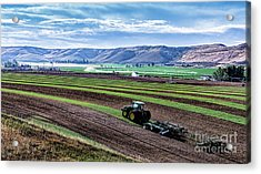 Farming In Pardise Agriculture Art By Kaylyn Franks Acrylic Print
