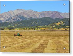 Farming In The Highlands Acrylic Print by David Chandler