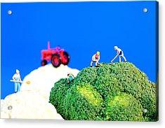 Farming On Broccoli And Cauliflower II Acrylic Print by Paul Ge