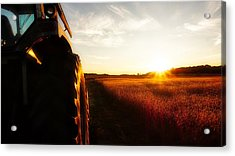 Farming Until Sunset Acrylic Print
