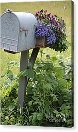 Acrylic Print featuring the photograph Farm's Mailbox by Frank Stallone