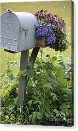 Farm's Mailbox Acrylic Print
