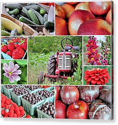 Farmstand Offterings Acrylic Print by Janice Drew